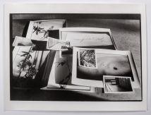 Untitled (Lee Heinar / deathbed)
