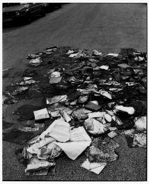Untitled (burned books on my doorstep), 2015